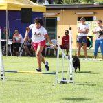 Campeonato Agility Brasileirao 2016