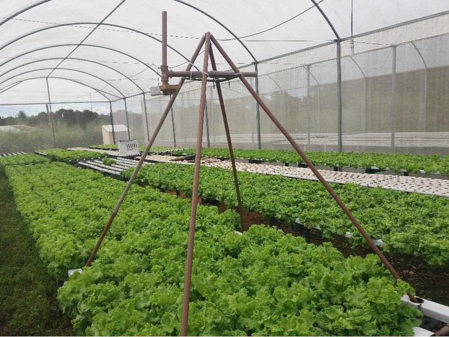 Agricultura 4.0 e o desenvolvimento de pesquisas de computação aplicada às ciências agrárias